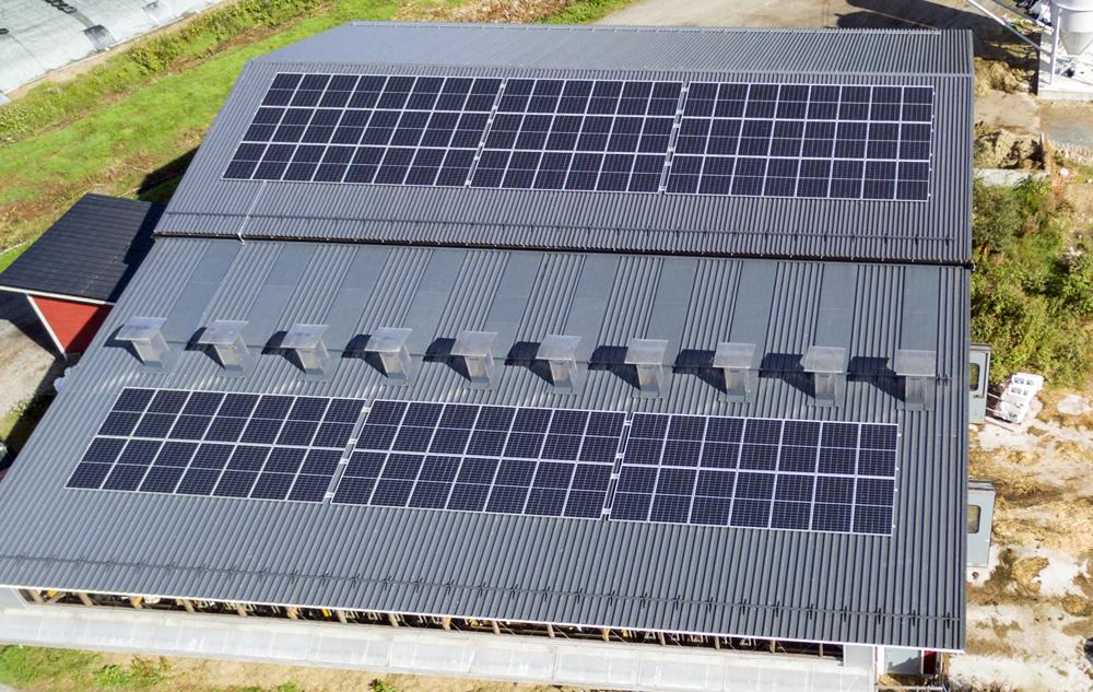 Aurinkokennoja tuotantorakennuksen katolla.