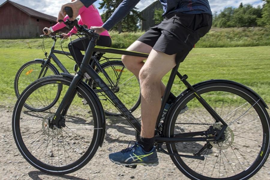 Kaksi polkupyöräilijää ajaa maalaismaisemassa kesällä.