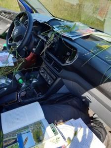 Sisäkuva auton etupenkiltä. Kojelaudalla  on runsaasti kasvinäytteitä ja avoimia vihkoja.