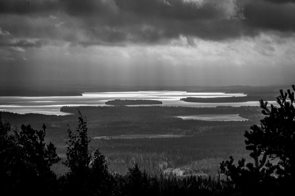 Mustavalkoinen valokuva. Vaaramaisema, jossa on mäntyjä ja kauempana siintävä järvi. Sadepilvi roikkuu maiseman yllä.